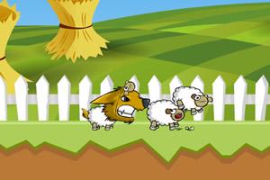 小灰狼吃小羊