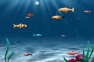 斑斕的小魚