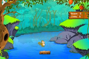 小動物過河