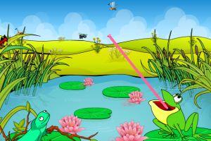 青蛙爭奪食物